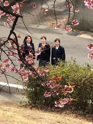 一足早く…桜満開🌸 - 聖和学園高等学校吹奏楽部 Official Blog