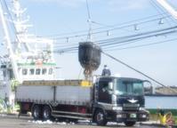 銚子漁港の朝 - キャンピングトレーラー奮闘記