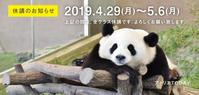 プラチナウィーク休講のお知らせ - 大阪の絵画教室|アトリエTODAY