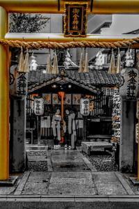 雨の京都逍遥・御金神社(2) - 日本写真かるた協会~写真が好きなオッサンのブログ~