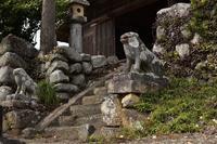 春日神社の狛犬 - 光画日記2
