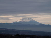 今朝の富士山 - 八ヶ岳 革 ときどき くるみ