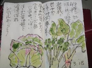 野菜の運命 - 絵手紙の小窓
