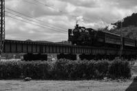 大井川鉄道 - 長い木の橋