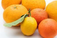 柑橘類を日差しを変えて写します。 - Keiko's life style