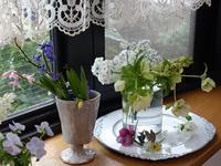 窓辺に - mille fleur の花とおやつ