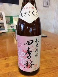 酒庫なりよしは、美しい桜が満開です! - 旨い地酒のある酒屋 酒庫なりよしの地酒魂!