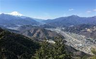 都留市/大月市中央線沿線の山九鬼山で小さな春を探すMount Kuki in Tsuru/Ōtsuki, Yamanashi - やっぱり自然が好き