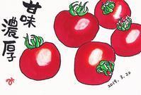 ミニトマト - きゅうママの絵手紙の小部屋