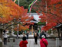 神社仏閣めぐり01_福知山修禅寺(静岡県) - デザインスタジオ バオバブのスクラップブック