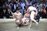 平成最後の大相撲春場所 - 東金、折々の風景