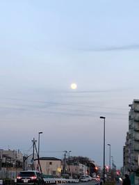 昨日の夕方。満月の気持ちがわからない。 - 設計事務所 arkilab