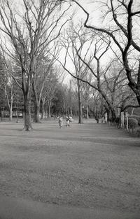 湖畔の人々 - 心のカメラ   more tomorrow than today ...