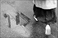 雨上がりの街角 - 和む由もがな
