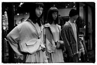 散歩中京辺り-3 - Hare's Photolog