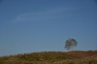 田畑のある風景④ - 光画日記2
