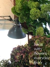 ◎3月24日(日)は雪bolo天然酵母パンの日です。 -  Flower and cafe 花空間 ivory (アイボリー)