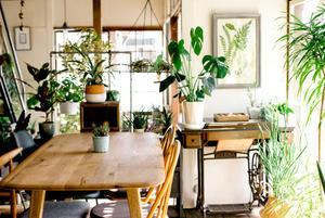 古民家カフェ「POUND」オープンのお知らせ - 東京カフェマニア:カフェのニュース