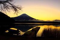 31年3月の富士(12)田貫湖夜明けの富士 - 富士への散歩道 ~撮影記~