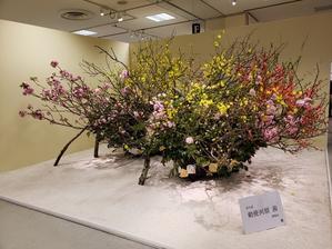 生け花展♪(かなり前ですが゚゚゚(^_^.)) - ちぃーのお部屋