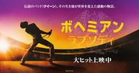 Queen の音楽でレッスン! - インストラクターYOKOの「ニャンコとレッスンの日々」~美猫ミケ子との19年&ニャンズ~