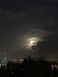 天秤座の満月 - プランテプラネットのブログ。ここからもうちょっと