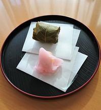 桜を感じながら春の和菓子・塩野@赤坂 - カステラさん