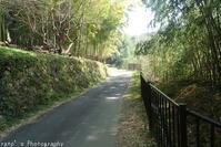 龍王山へ(2月27日) - ratoの山歩き