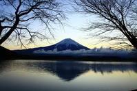 31年3月の富士(13)田貫湖棚雲の富士 - 富士への散歩道 ~撮影記~