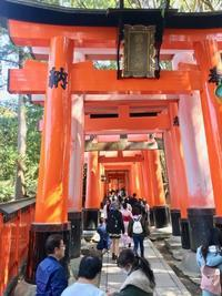 日本の思い出<京都3日間> - カッパドキアのデイジー/オヤ刺繍店長日記