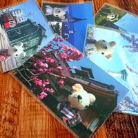 [マリエッタ函館店さん] あみぐるみのポストカードを納品♪ - Smiling * Photo & Handmade 2 動物のあみぐるみ・レジンアクセサリー・風景写真のポストカード