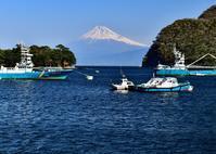 西伊豆③ - 富士山に夢中