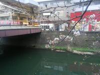 ちょっと寄り道・桜咲くから - 神奈川徒歩々旅