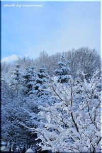 なごり雪 - 北海道photo一撮り旅