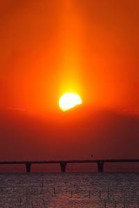 準ダイヤ富士2019-03-25更新 - 夕陽に魅せられて・・・