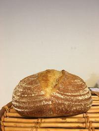 久しぶりに酒種でカンパーニュ - 土浦・つくば の パン教室 Le soleil