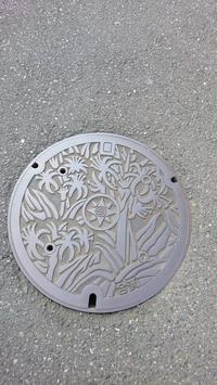 Manhole Shots @三浦市ANDさいたま市 - 鴎庵