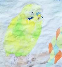 無題の水彩画 - Blue & Yellow Budgie