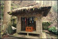 立石寺 -9 - Camellia-shige Gallery 2