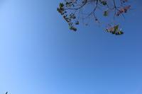 春だよ!372 - 萩セミナーハウスBLOG