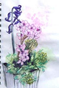 花の名前が分からない! - ryuuの手習い