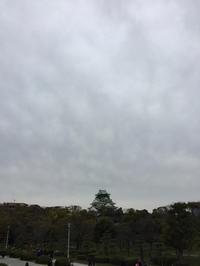 大阪 - (鳥撮)ハタ坊:PENTAX k-3、k-5で撮った写真を載せていきますので、ヨロシクですm(_ _)m