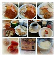 【生中継】朝ごはん食べています~♪ - コグマの気持ち