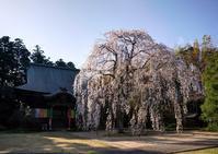 栄福寺1 - Patrappi