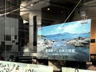 『香港癒やしの半日旅』展、後半に突入します - 香港*芝麻緑豆