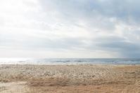 いつもの木 - 東に向かえば海がある