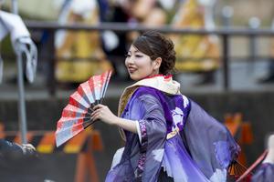 第19回浜松がんこ祭り『百華夢想』 - tamaranyのお散歩2