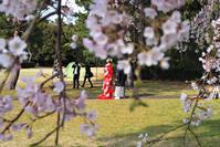 Happy Weding - Shimanami Shore Line