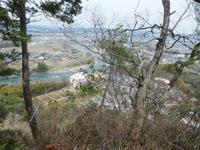 カタクリ咲く鳩吹山 (313.5M)     登頂 編 - 風の便り