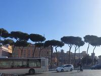 2019 イタリア旅 - 2 :Roma~Marche(あちこち)~Tivoli - al mare 気ままにmamma (たまにnonna)